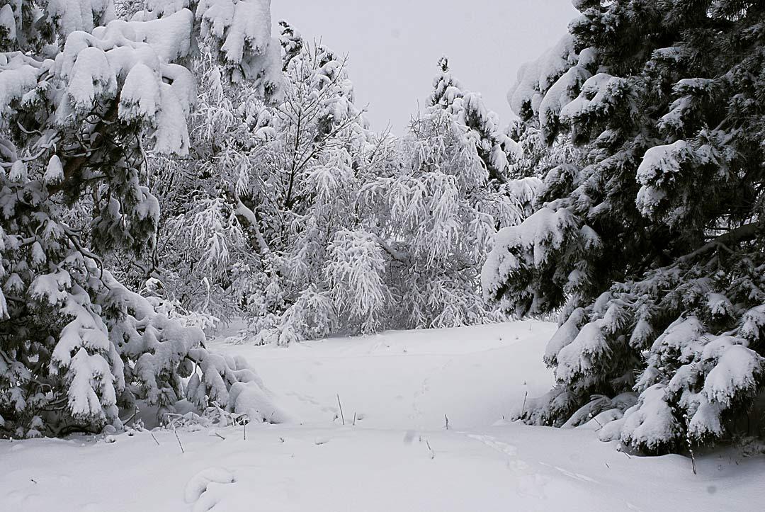 Новый год в горах Крыма тур