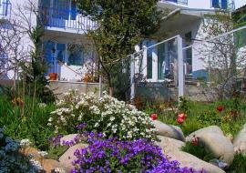 Дача Феодоро - Частный сектор  Алушта  недорогой отдых в Алуште