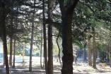 Санаторий в Алуште   бассейн  с лечением